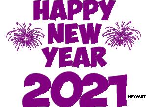voeux les plus chaleureux pour noel et nouvel an.jpg